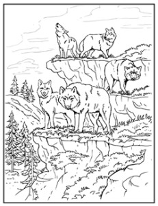 indian and wolf coloring pages - photo#31